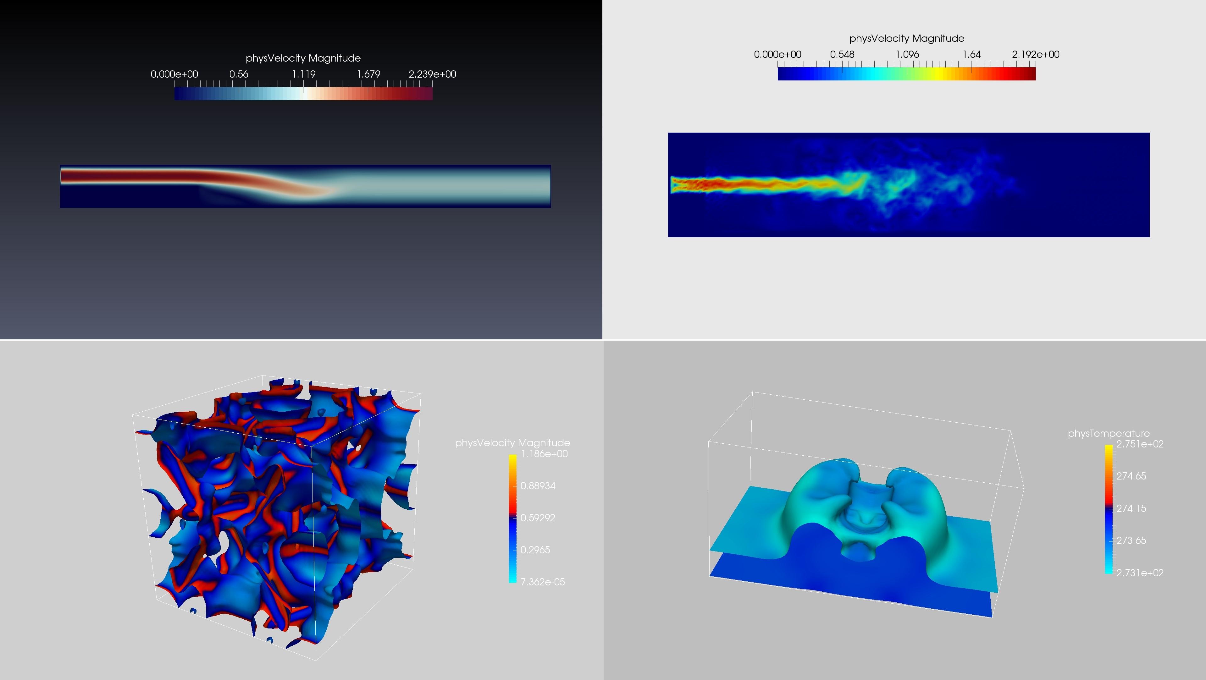 格子玻尔兹曼方法在流动传质方向的应用